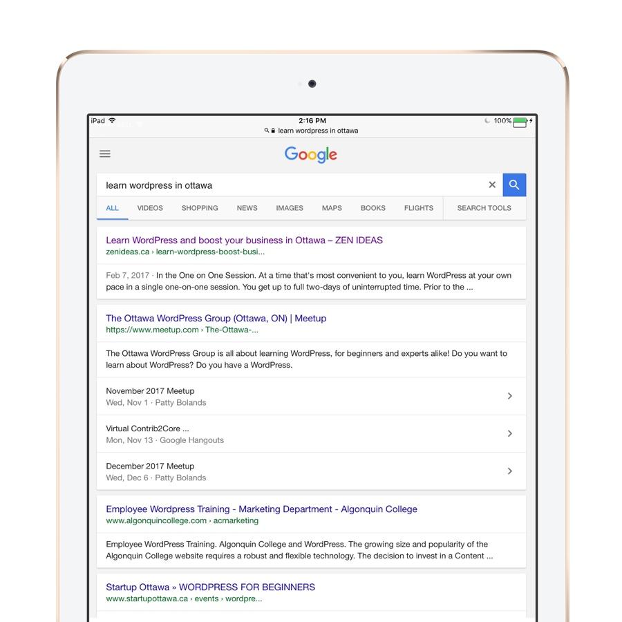 zenideas seo learn wordpress search result